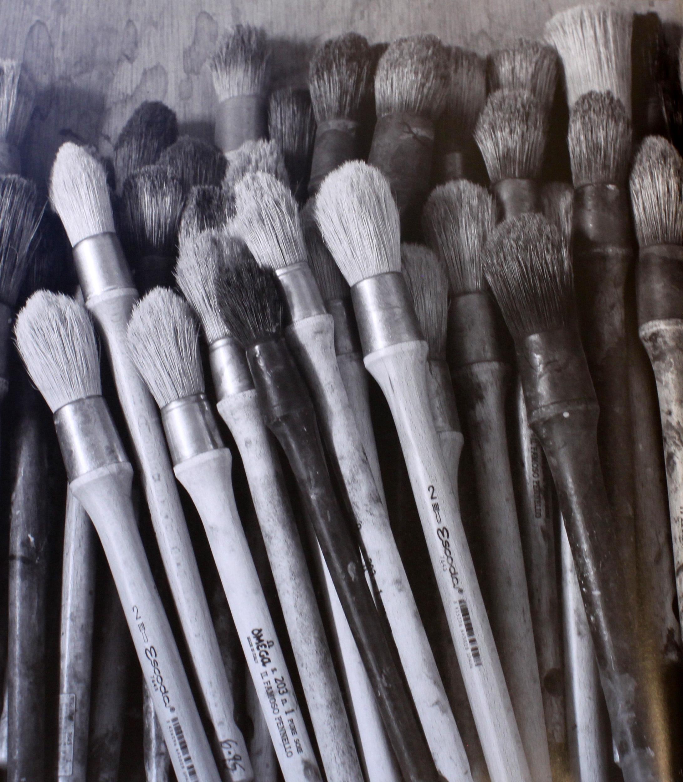 2010_Brushes.JPG